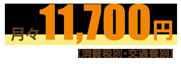 月々11,700円(消費税別・交通費別)